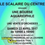 Bourse aquariophile à la Louvière (Belgique), le samedi 22 avril 2017