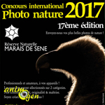 17 ème Concours international de photo nature à Séné (58), du 15 juin au 15 septembre 2017