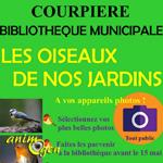 Expo photos les oiseaux de nos jardins à Courpière (63), du 02 au 30 juin 2017