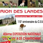 40 ème Exposition Nationale d'élevage et de Championnat à Rion des Landes (40), le dimanche 18 juin 2017
