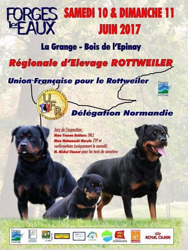 Régionale d'élevage Rottweiler à Forges les Eaux (76), du samedi 10 au dimanche 11 juin 2017