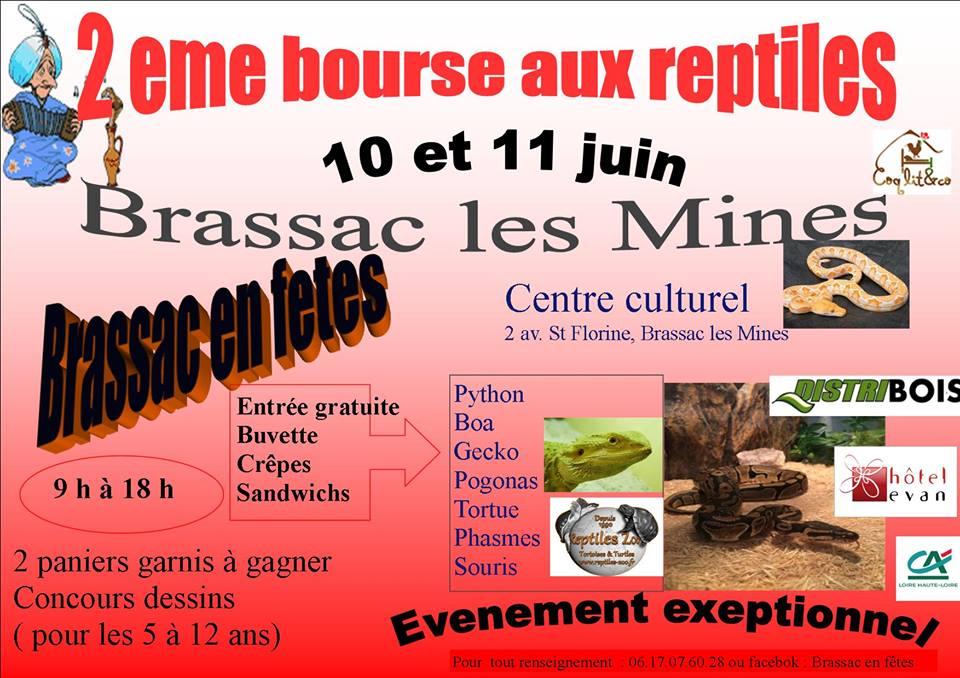 2 ème Bourse aux reptiles à Brassac les Mines (63), du samedi 10 au dimanche 11 juin 2017