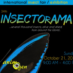34 ème Bourse Internationale d'Entomologie «Insectorama» à Seraing (Belgique), le dimanche 21 octobre 2018